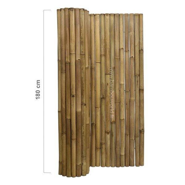 palissade bambou 50 60mm naturel bambou world. Black Bedroom Furniture Sets. Home Design Ideas