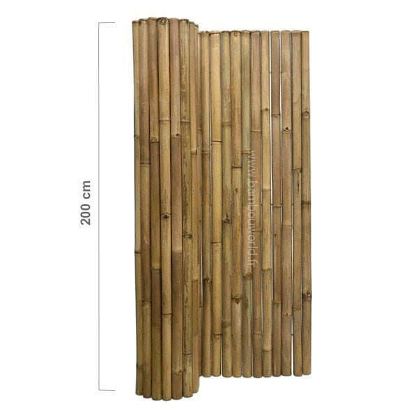 Palissade bambou (10)