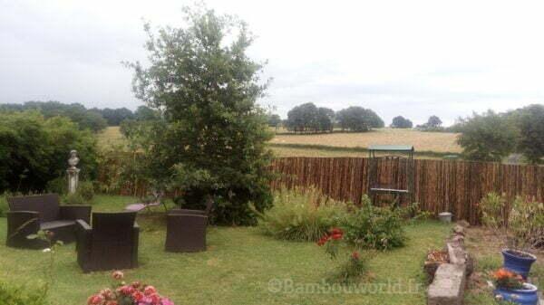 clôture en bambou noir