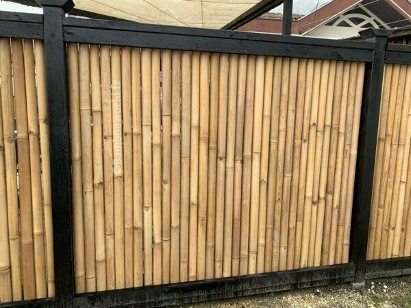clôture bambou gros